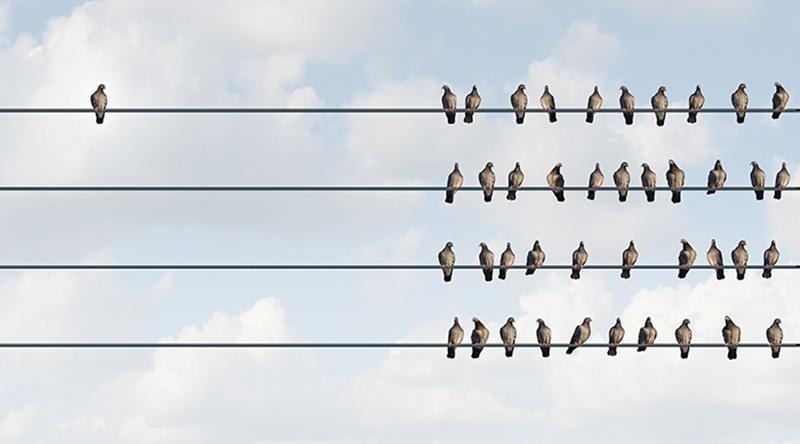 Leadership_individuell_ausderReihetanzend_AdobeStock_87899516_freshidea